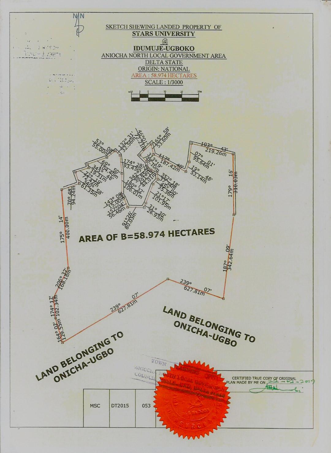 A Screenshot of the Certificate of Occupancy