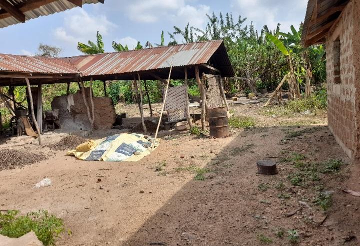 A cassava flour production centre in Oduroin