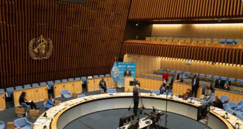 World Health Organisation Forum