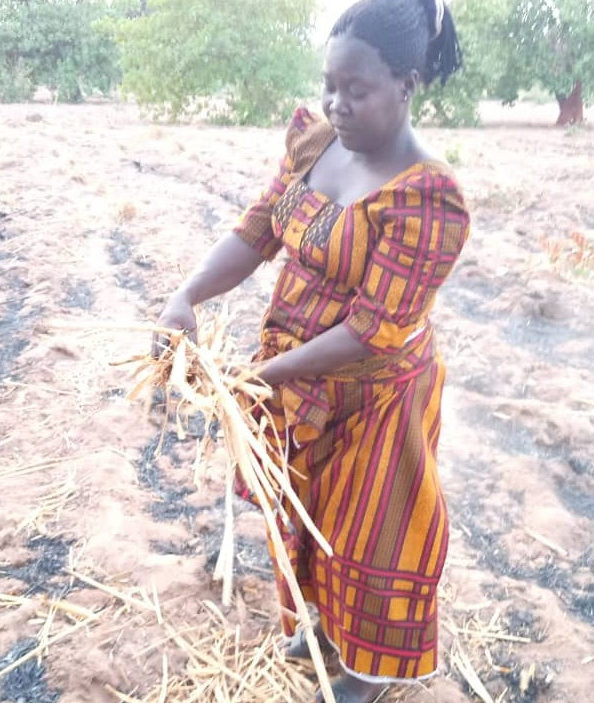 Monica: Her dream's of a bumper harvest from the farm plantation was shattered by irregular rainfall/Photo Credit: Yekeen Akinwale