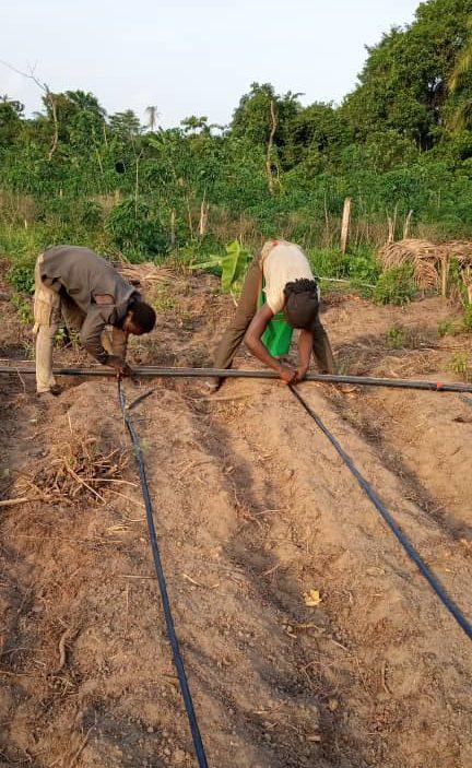 Ms Suberu on her farm