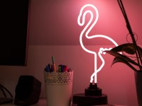 Flamingo Neon Lamp   Neonlicht Verlichting Kopen