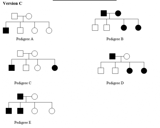 Indicate the pattern of inheritance observed for pedigree