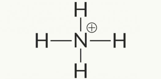 Polyatomic Ion Quizzes Online, Trivia, Questions & Answers
