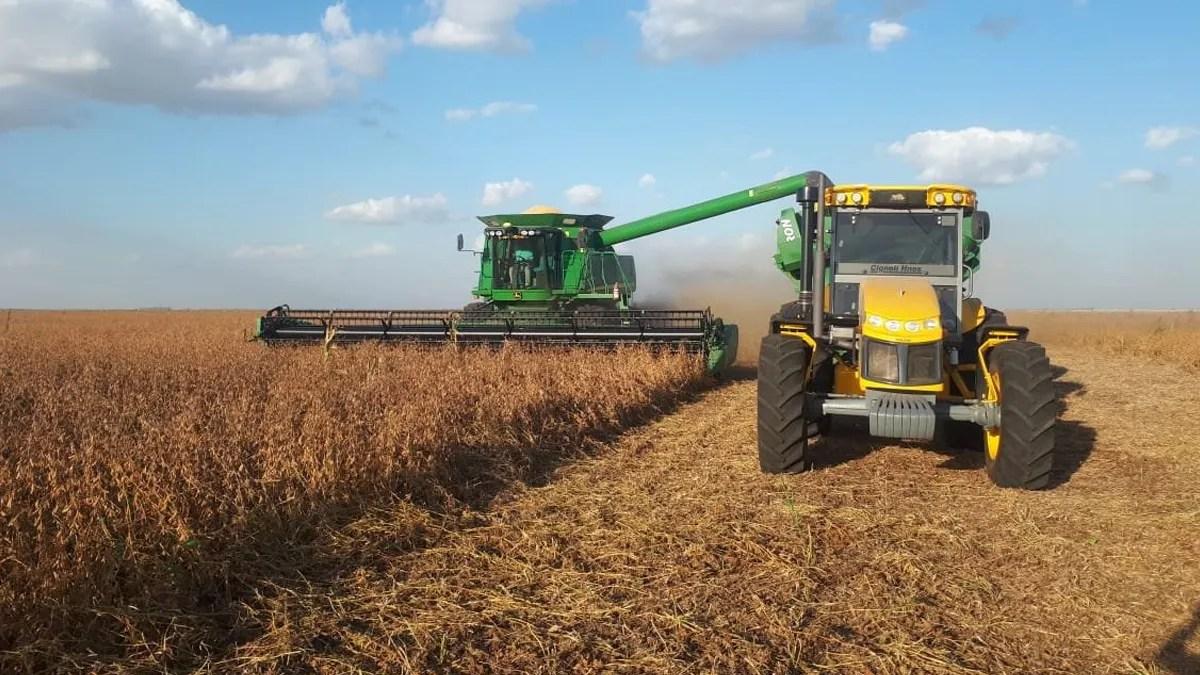 La soja vuela a u$s 600 por tonelada en Chicago y mejora el ingreso de dólares