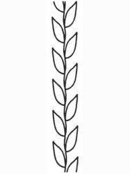Simple Leaf Border 045285570114