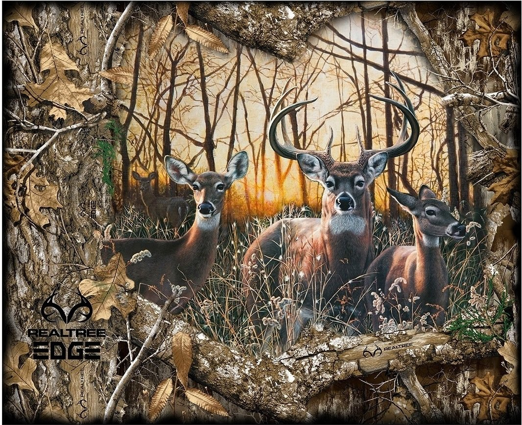realtree edge 1167 scenic