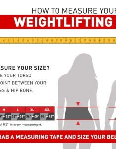 Size chart also rdx inch leather weightlifting belt sports au rh rdxsports