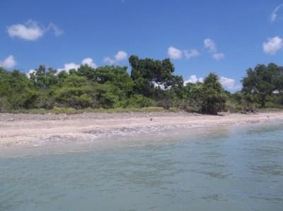 For sale Farmland, Mojo Island, Bangka-Belitung, Indonesia ...