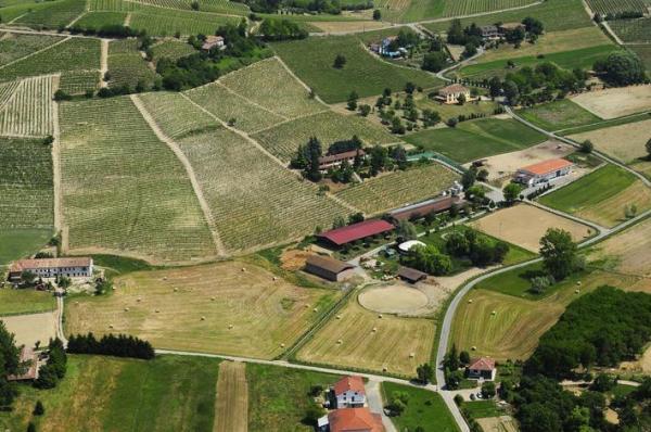 For sale Farm Nizza monferrato Asti Italy NIZZA