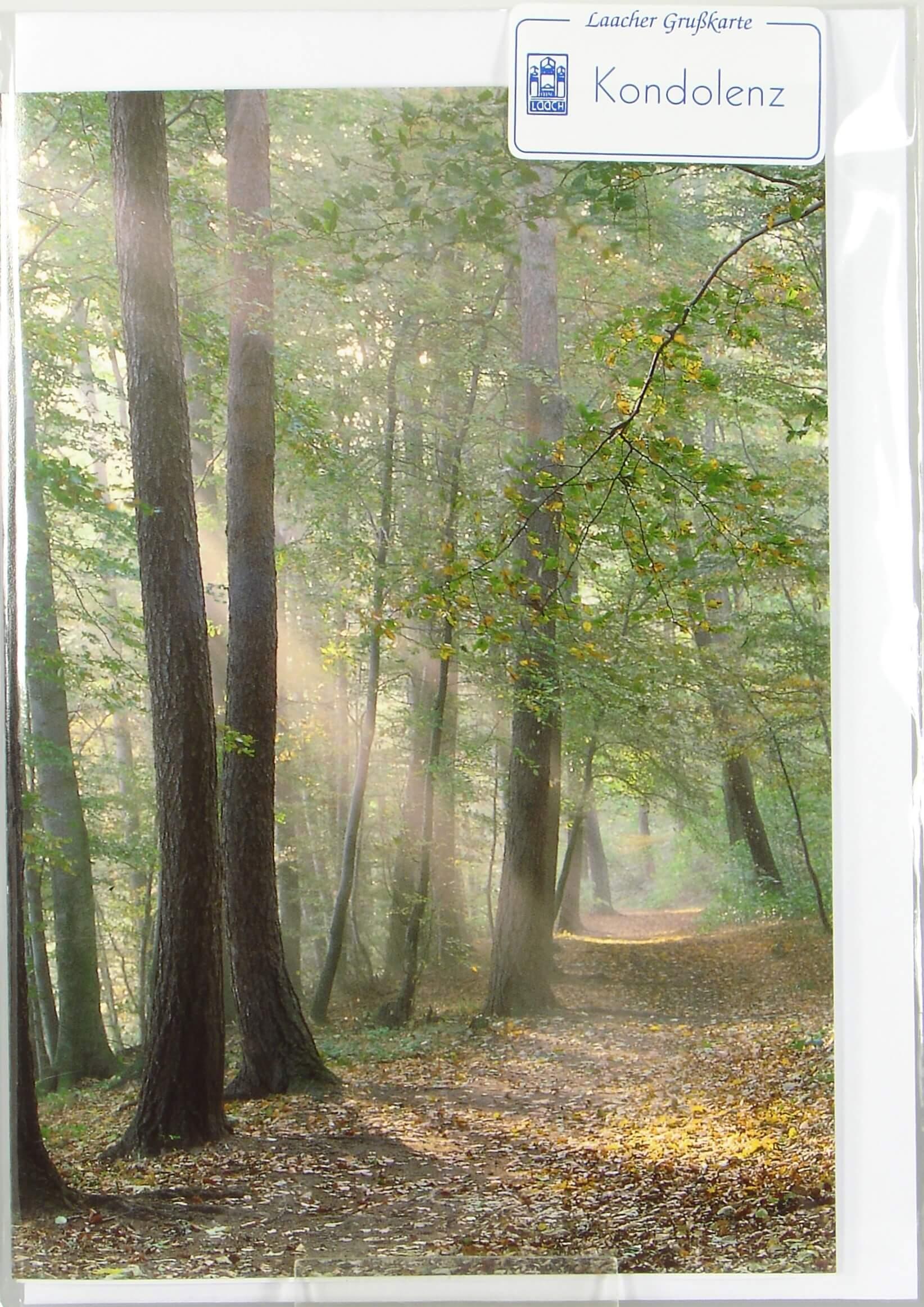 Trauerkarte  Sonnenstrahlen im Wald