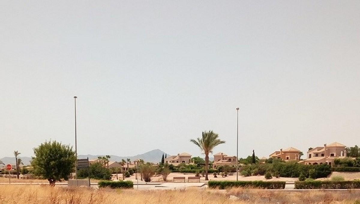 Parcelas Alameda (6)