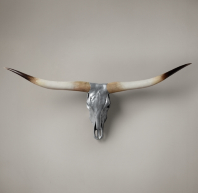 Texas Longhorn Steer Skull  Aluminum