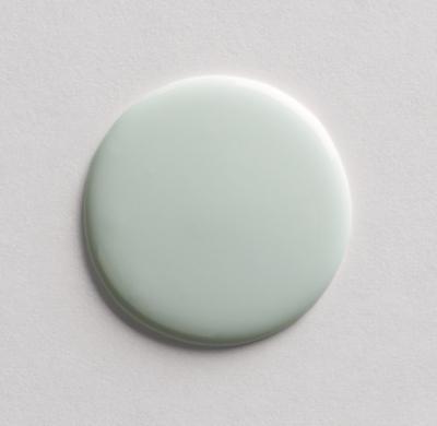Eco Friendly Interior Latex Paint Bright Silver Sage