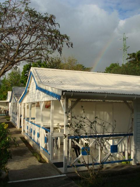 le jardin tropical bouillante basse
