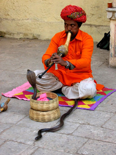 Charmeur de Serpent  Portraits  Inde  Routardcom