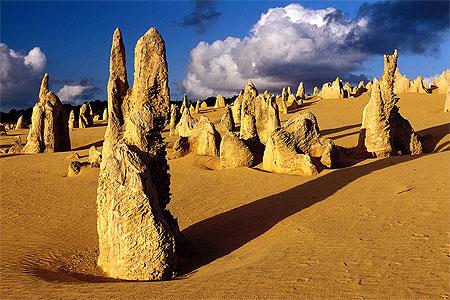 Pinnacles  Dsert des Pinnacles  Western Australia AustralieOccidentale  Australie