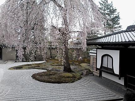 jardin sec a kyoto arbres kyoto
