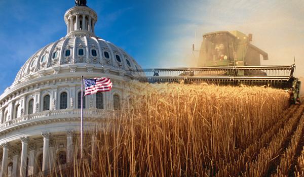 Image result for farm bill