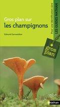 L'indispensable Guide Du Cueilleur De Champignons : l'indispensable, guide, cueilleur, champignons, Bol.com, L'indispensable, Guide, Cueilleur, Champignons, (ebook),, Guillaume, Eyssartier