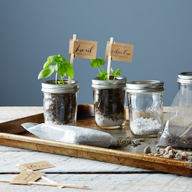 makerskit_diy-herb-kit_provisions_mark_weinberg_13-08-14_0224_MID