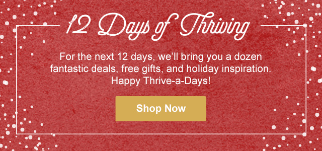12 DAYS OF THRIVING
