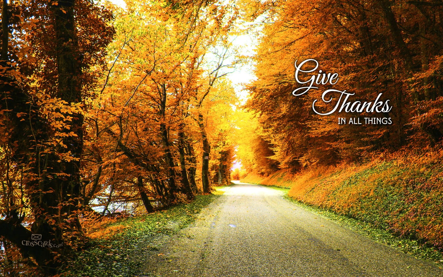 Sympathy Wallpaper Quotes Give Thanks Desktop Wallpaper Free Backgrounds