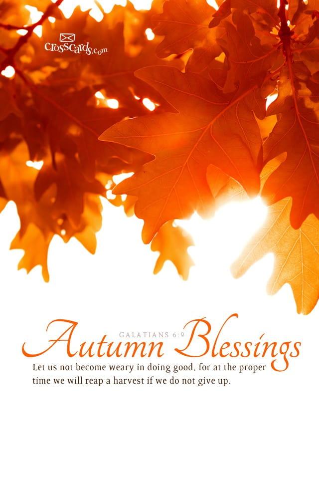 Christian Wallpaper Fall Happy Birthday Oct 2012 Autumn Blessings Desktop Calendar Free October
