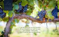 May 2014 - Vine and Branches Desktop Calendar- Free May ...