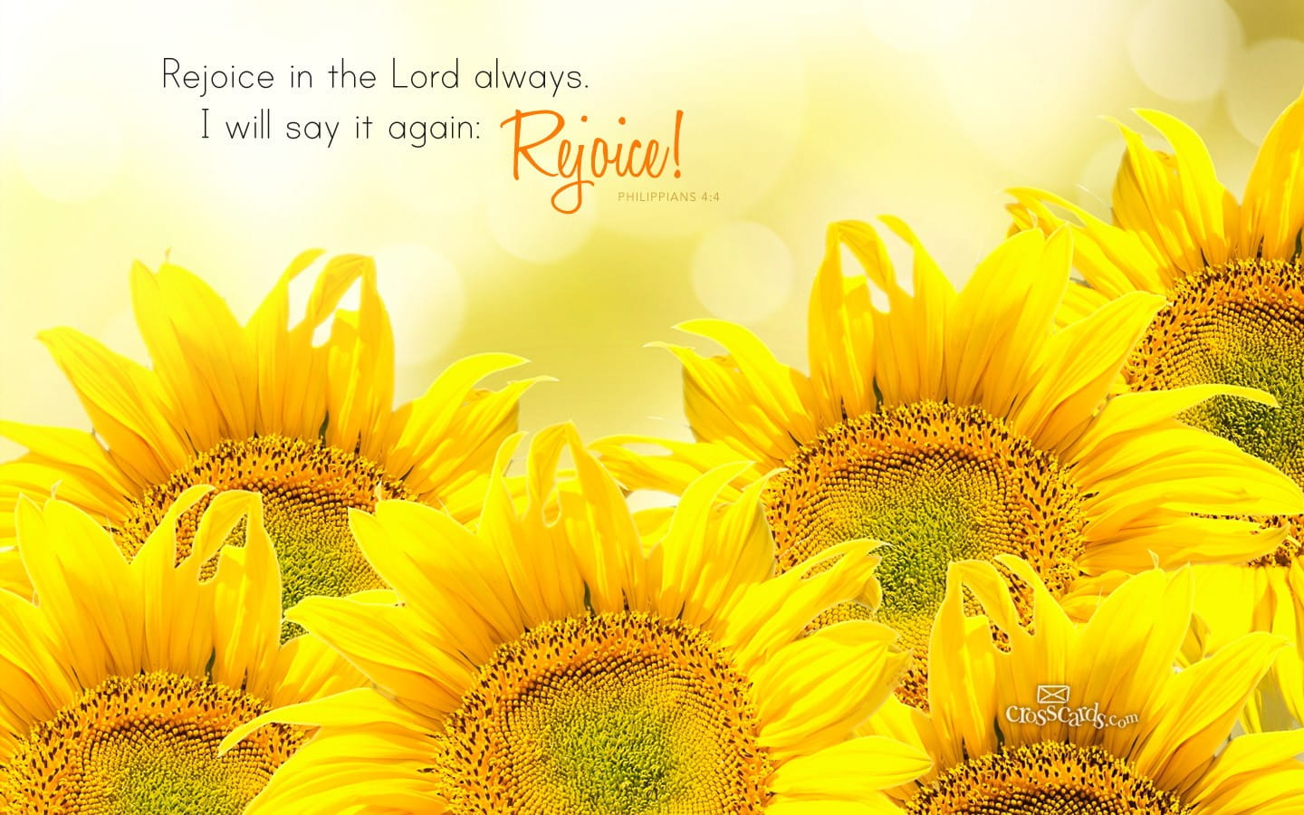 Rejoice In The Lord Bible Verses And Scripture Wallpaper