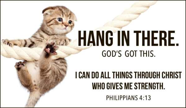 Free Hang in There eCard eMail Free Personalized Care