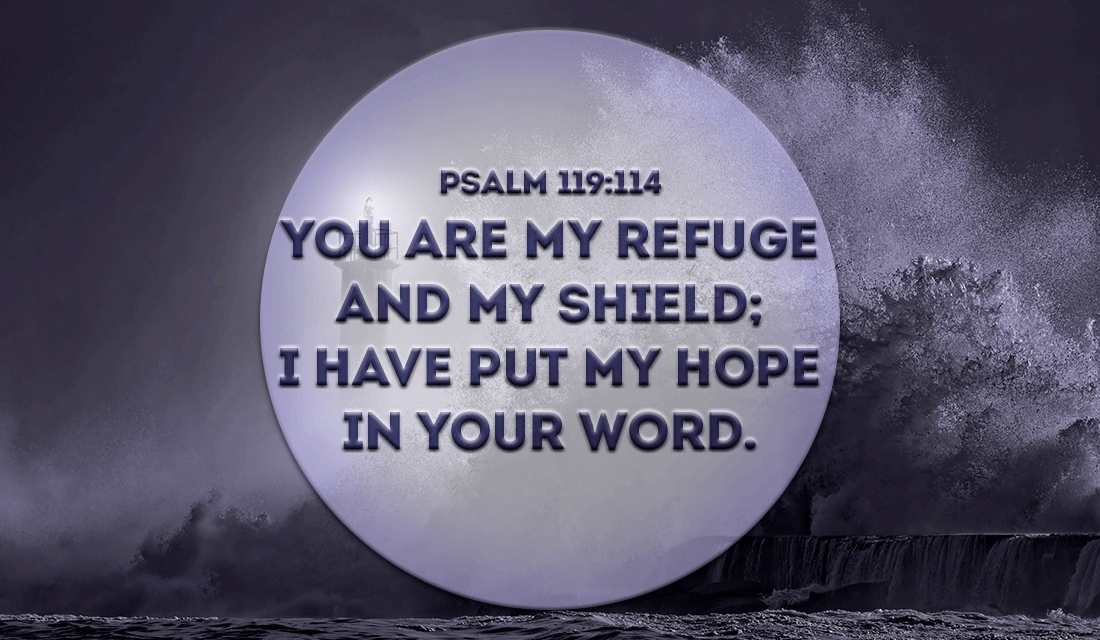 Thank You For Protecting Me Lord Amen Psalm 119 114