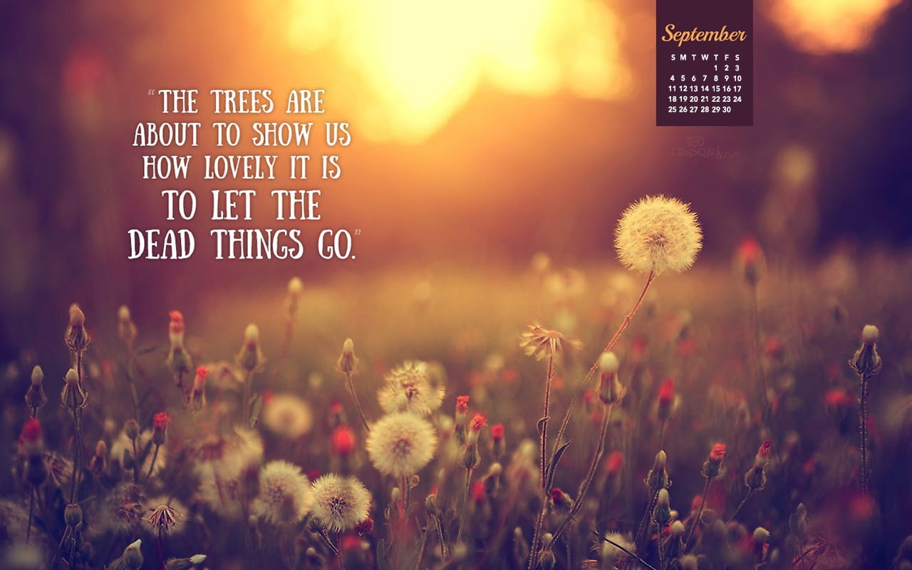 Fall Vibes Wallpaper September 2016 Let Things Go Desktop Calendar Free