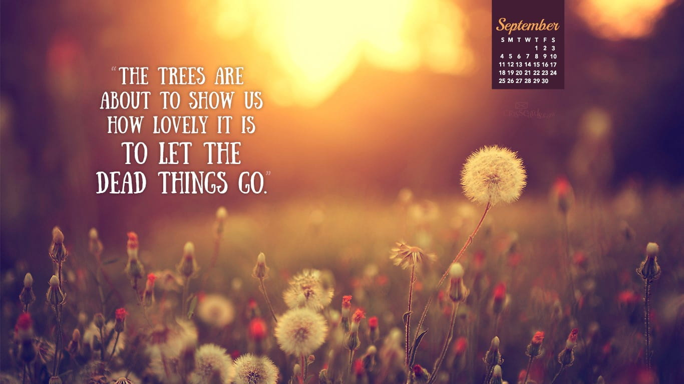 Quote Wallpapers For Iphone 6 Plus September 2016 Let Things Go Desktop Calendar Free