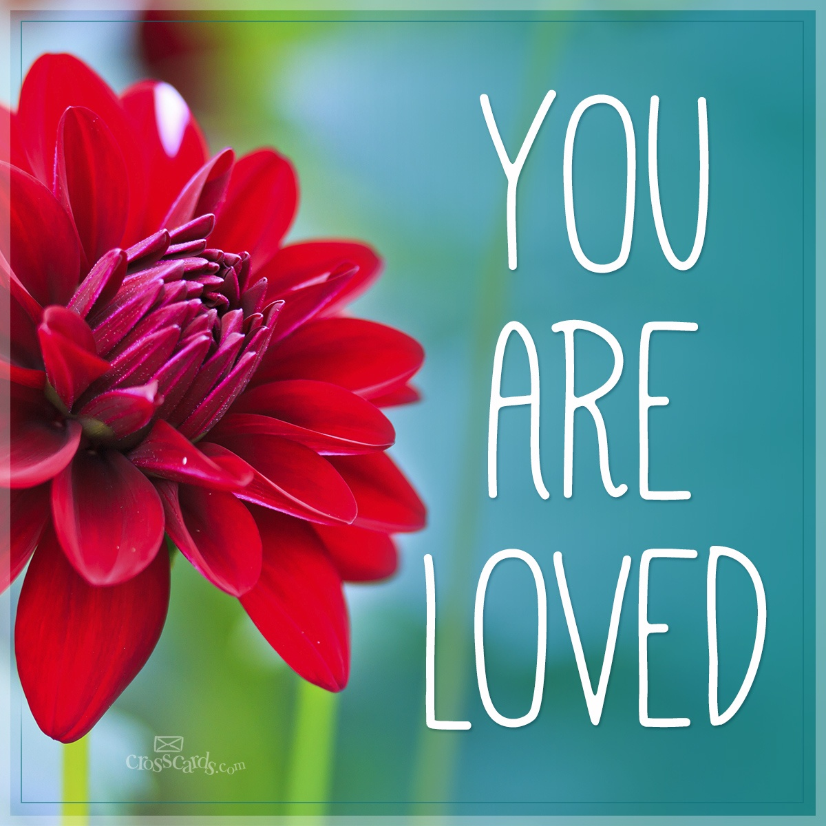 You Are Loved Verse