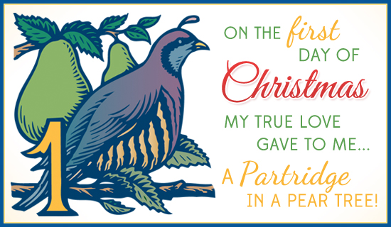 Free Partridge In A Pear Tree ECard EMail Free