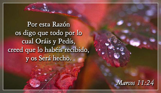 Español Marcos 11 24 Free Christian Ecards Greeting Cards