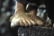 hobbits' feet hot