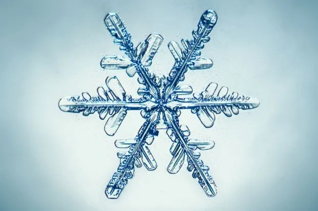 Winter's most beautiful secret: The astonishing, complex science of snowflakes