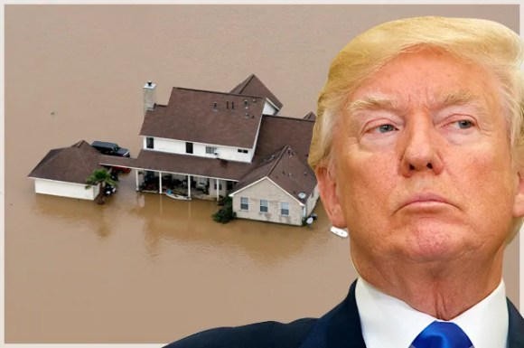 Trump faces first natural disaster crisis: Hurricane Harvey predicted to be first major storm in...