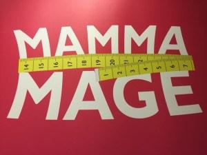 MammaMage SamaMama Gravidträning Halmstad