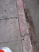 Red Painted Curb Means : painted, means, Risks, Diego's, Painted, Curbs, Diego, Reader