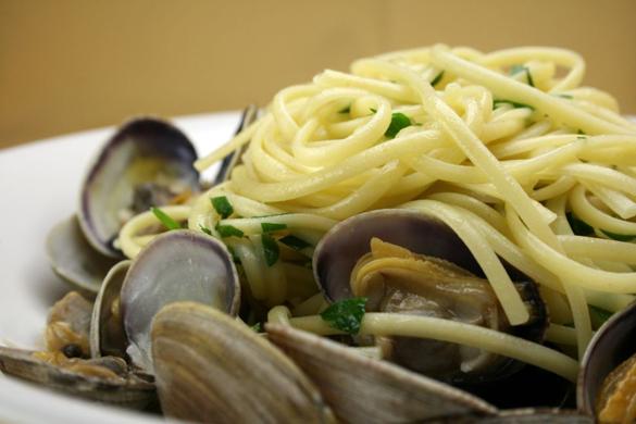 clams-CU-1