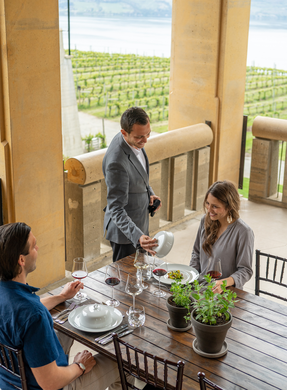 Mission Hill Family Estate Announces New Wine & Culinary Experiences