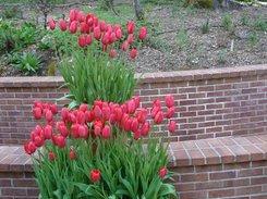 Filoli Gardens, California