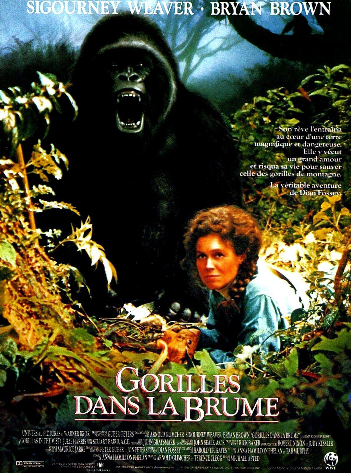 Gorilles dans la brume: Amazon.fr: Sigourney Weaver, Bryan
