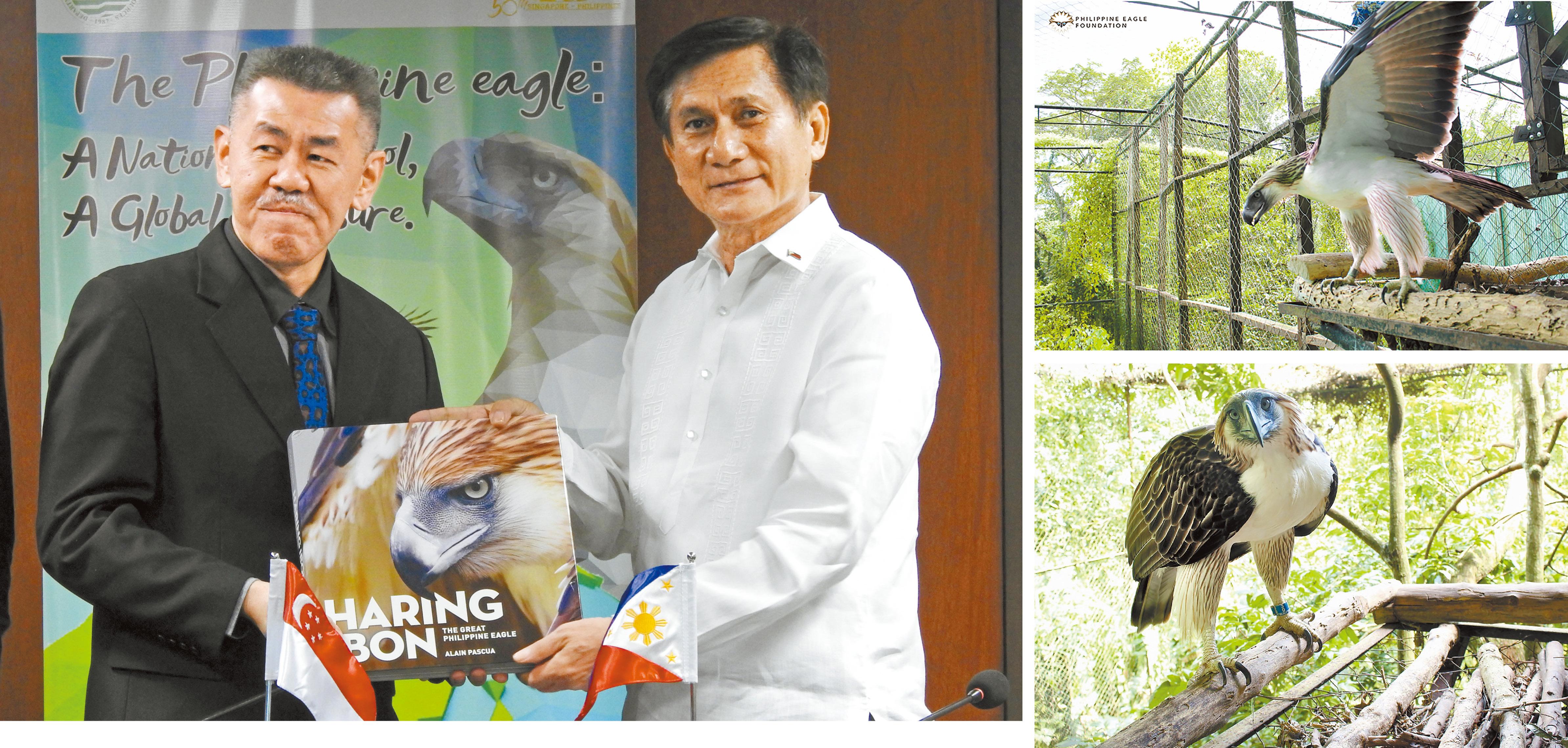 菲律賓國寶鷹借給新加坡   多倫多   加拿大中文新聞網 - 加拿大星島日報 Canada Chinese News