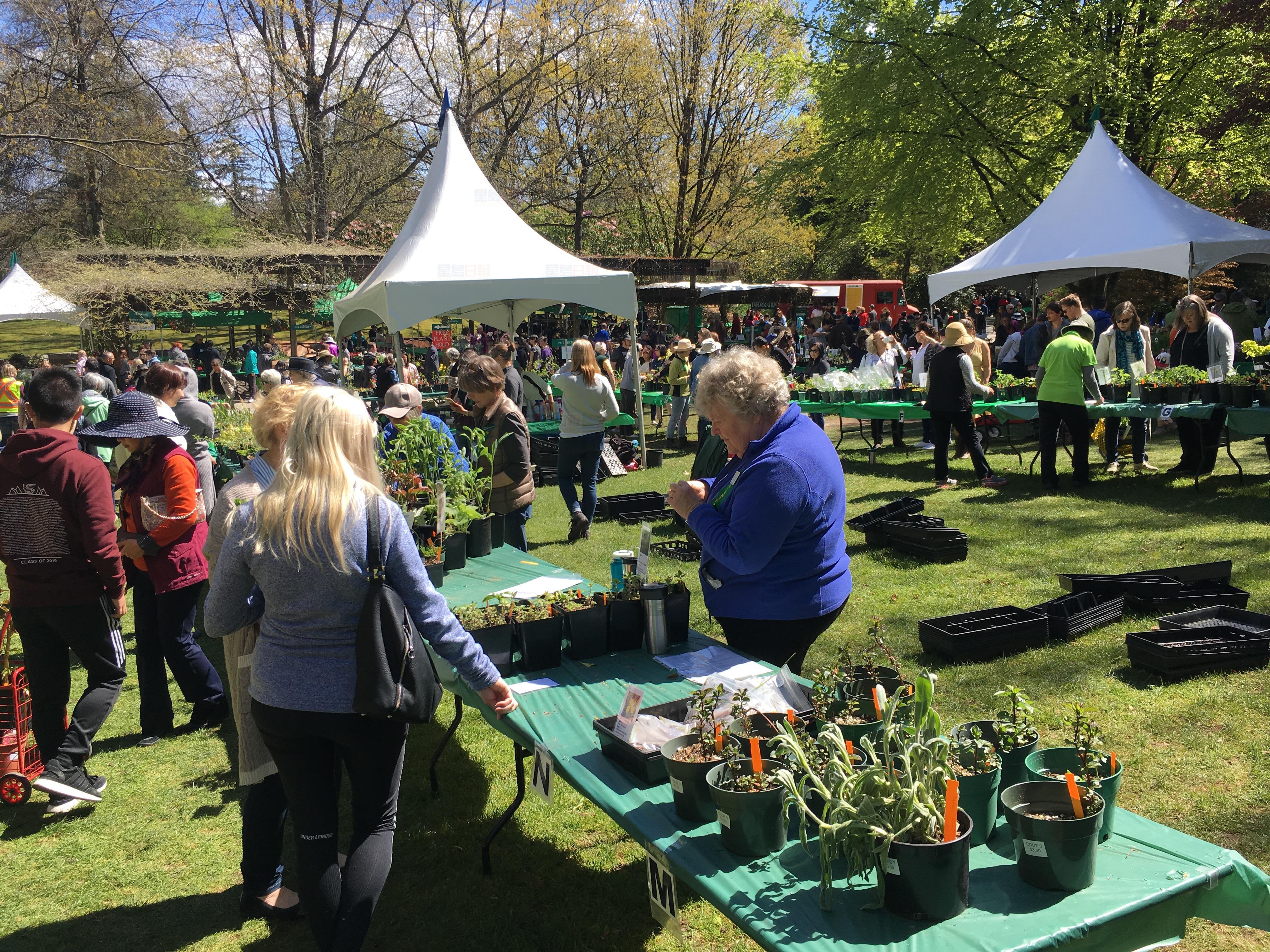 溫植物公園第41屆植物義賣 湧入近萬民眾參加