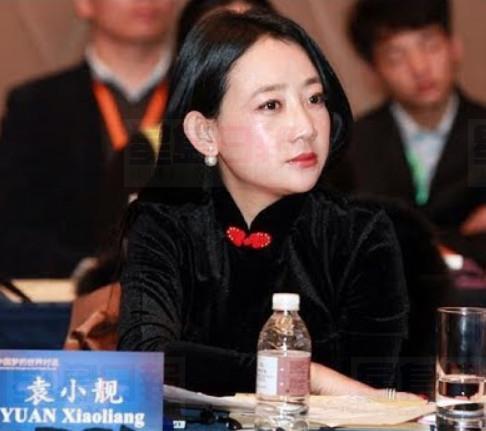 楊恒均妻子「五毛黨主席」袁小靚離華遭拒 被帶走問話