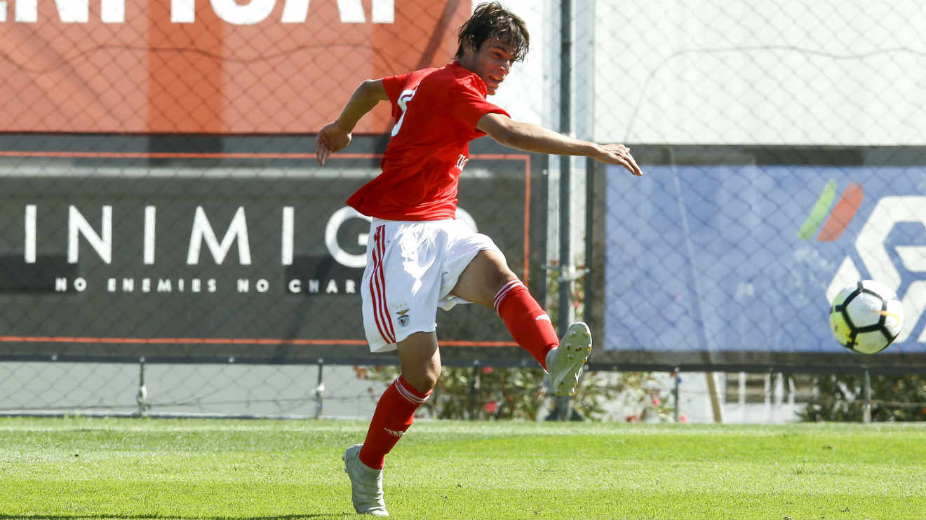 Eight Benfiquistas In The Draw From The U 17 National Team